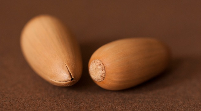 two-pale-seeds